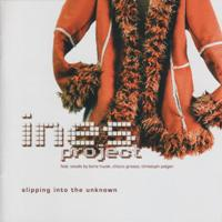 Cover INES: Slipping Into The Unknown
